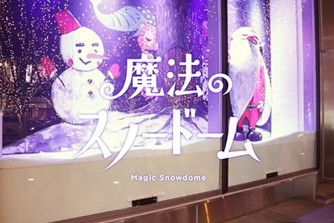 snowdome_list